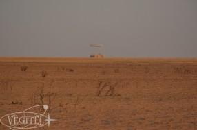 soyuz-landing-trip-2017-23